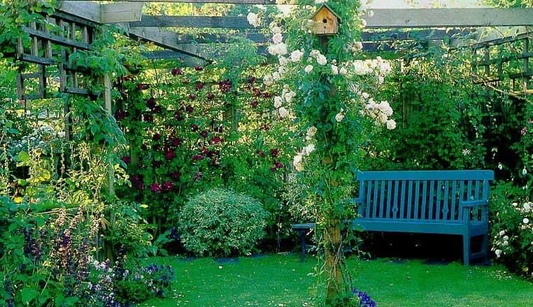 Уголок отдыха с плетистыми розами в саду